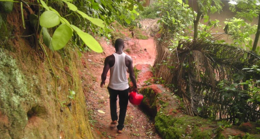Symbole de l'amitié - Forêt tropicale